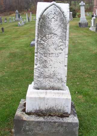STEELE, JANE - Stark County, Ohio | JANE STEELE - Ohio Gravestone Photos