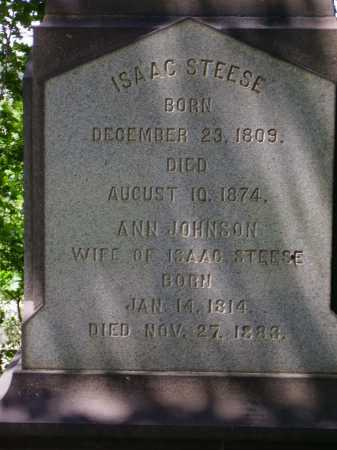 STEESE, ANN - Stark County, Ohio | ANN STEESE - Ohio Gravestone Photos