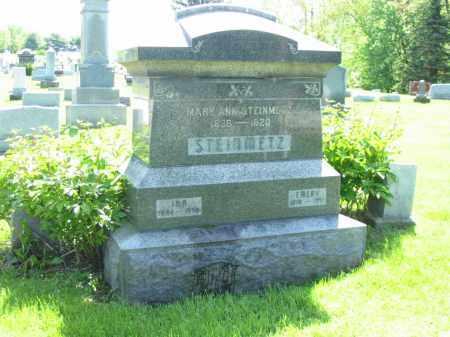 STEINMETZ, MARY ANN - Stark County, Ohio | MARY ANN STEINMETZ - Ohio Gravestone Photos