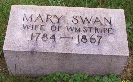 STRIPE, MARY - Stark County, Ohio | MARY STRIPE - Ohio Gravestone Photos