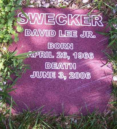 SWECKER, DAVID LEE JR. - Stark County, Ohio   DAVID LEE JR. SWECKER - Ohio Gravestone Photos