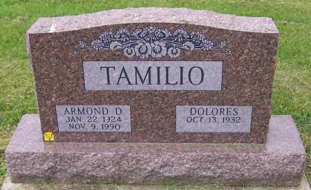 TAMILIO, ARMOND D. - Stark County, Ohio | ARMOND D. TAMILIO - Ohio Gravestone Photos