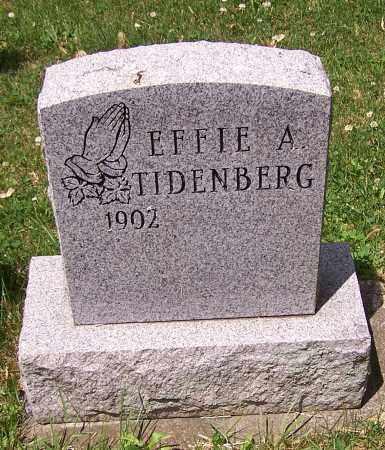TIDENBERG, EFFIE A. - Stark County, Ohio | EFFIE A. TIDENBERG - Ohio Gravestone Photos