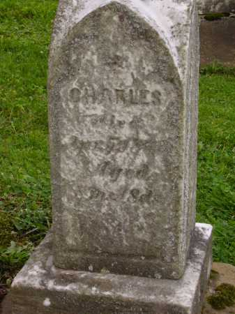 UNKNOWN, CHARLES - Stark County, Ohio | CHARLES UNKNOWN - Ohio Gravestone Photos