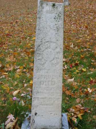 SHOLLENBERGER VAUGHN, ELIZABETH - Stark County, Ohio | ELIZABETH SHOLLENBERGER VAUGHN - Ohio Gravestone Photos