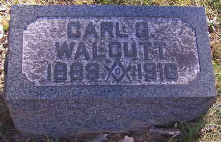 WALCUTT, CARL G. - Stark County, Ohio | CARL G. WALCUTT - Ohio Gravestone Photos