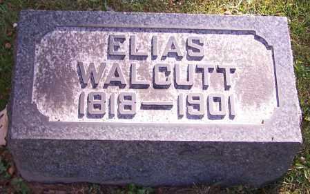 WALCUTT, ELIAS - Stark County, Ohio | ELIAS WALCUTT - Ohio Gravestone Photos