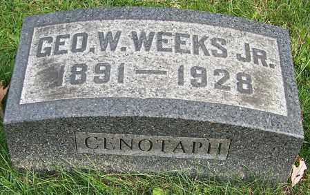 WEEKS, GEO.W. (JR) - Stark County, Ohio | GEO.W. (JR) WEEKS - Ohio Gravestone Photos