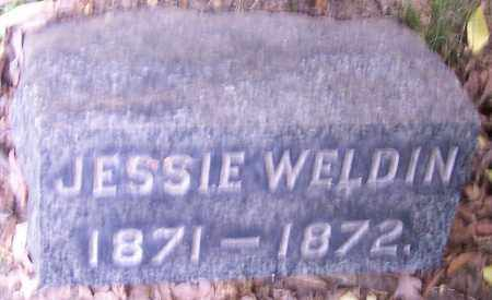 WELDIN, JESSIE - Stark County, Ohio | JESSIE WELDIN - Ohio Gravestone Photos