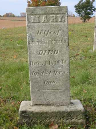 WERTENGERBER, MARY - Stark County, Ohio   MARY WERTENGERBER - Ohio Gravestone Photos