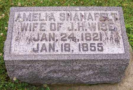 WISE, AMELIA - Stark County, Ohio | AMELIA WISE - Ohio Gravestone Photos