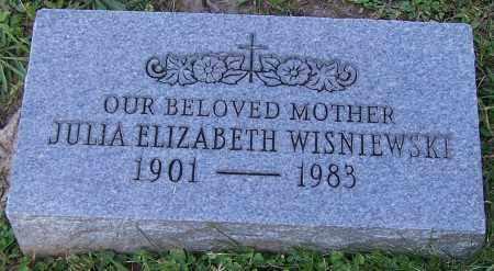 WISNIEWSKI, JULIA ELIZABETH - Stark County, Ohio | JULIA ELIZABETH WISNIEWSKI - Ohio Gravestone Photos