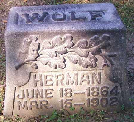 WOLF, HERMAN - Stark County, Ohio | HERMAN WOLF - Ohio Gravestone Photos