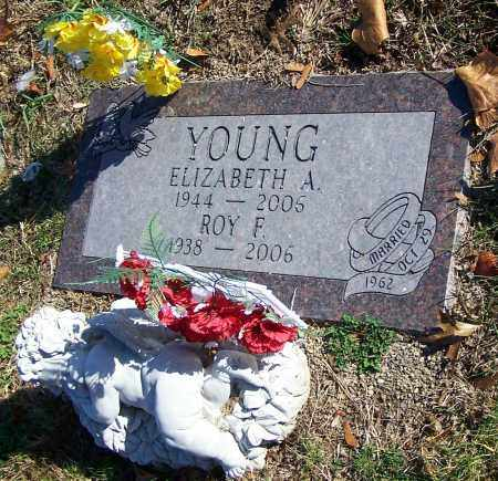 YOUNG, ELIZABETH A. - Stark County, Ohio | ELIZABETH A. YOUNG - Ohio Gravestone Photos