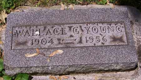 YOUNG, WALLACE G. - Stark County, Ohio | WALLACE G. YOUNG - Ohio Gravestone Photos