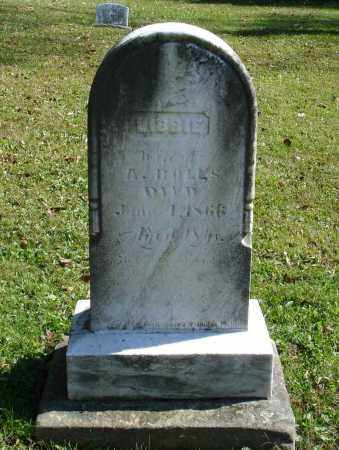 BOLLS, LIBBIE - Summit County, Ohio | LIBBIE BOLLS - Ohio Gravestone Photos