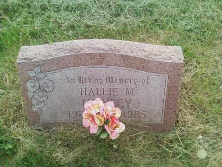 CONLEY, HALLIE - Summit County, Ohio   HALLIE CONLEY - Ohio Gravestone Photos