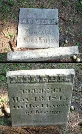 MILLER, ALMIRA - Summit County, Ohio | ALMIRA MILLER - Ohio Gravestone Photos