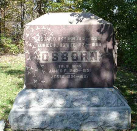 OSBORN, EUNICE H - Summit County, Ohio | EUNICE H OSBORN - Ohio Gravestone Photos