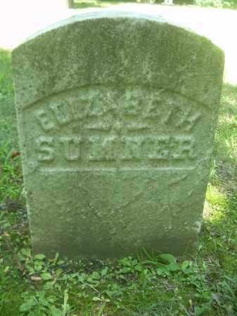 SUMNER, ELIZABETH - Summit County, Ohio | ELIZABETH SUMNER - Ohio Gravestone Photos