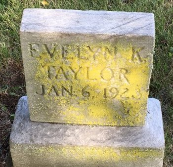 TAYLOR, EVELYN K. - Summit County, Ohio | EVELYN K. TAYLOR - Ohio Gravestone Photos