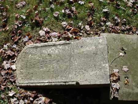THORP, MARY - Summit County, Ohio   MARY THORP - Ohio Gravestone Photos