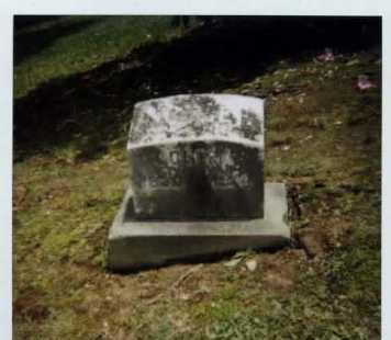 THOMPSON WELTON, LOUISA A. - Summit County, Ohio | LOUISA A. THOMPSON WELTON - Ohio Gravestone Photos