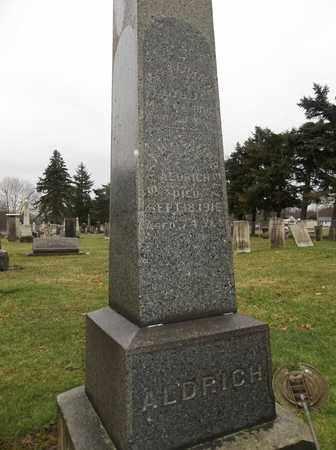 ALDRICH, SARAH - Trumbull County, Ohio | SARAH ALDRICH - Ohio Gravestone Photos