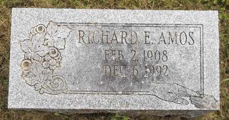 AMOS, RICHARD E. - Trumbull County, Ohio | RICHARD E. AMOS - Ohio Gravestone Photos