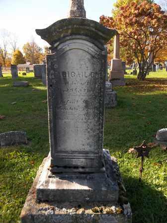 BARB, ABIGAIL B. - Trumbull County, Ohio | ABIGAIL B. BARB - Ohio Gravestone Photos