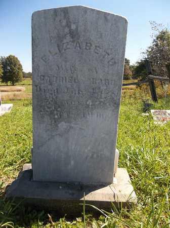 BARB, ELIZABETH - Trumbull County, Ohio | ELIZABETH BARB - Ohio Gravestone Photos