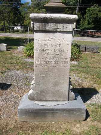 SILLIMAN BARCLAY, AMANDA - Trumbull County, Ohio | AMANDA SILLIMAN BARCLAY - Ohio Gravestone Photos