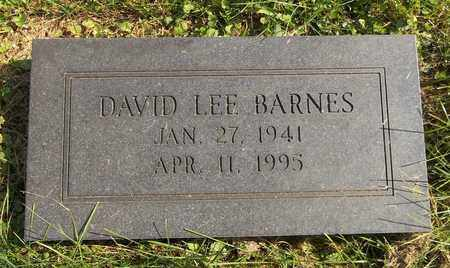 BARMES, DAVID LEE - Trumbull County, Ohio | DAVID LEE BARMES - Ohio Gravestone Photos