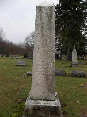 BARNES, CALVIN M. - Trumbull County, Ohio   CALVIN M. BARNES - Ohio Gravestone Photos