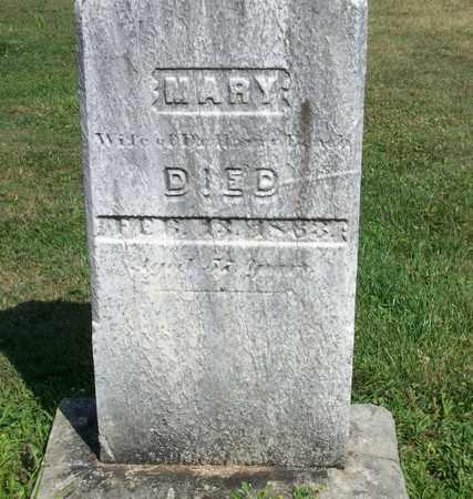 CHEW BEACH, MARY - Trumbull County, Ohio | MARY CHEW BEACH - Ohio Gravestone Photos