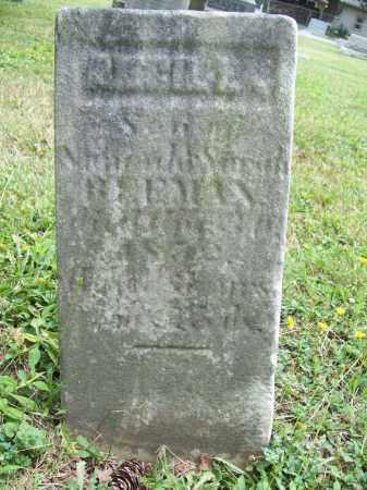 BEEMAN, ANCILL - Trumbull County, Ohio | ANCILL BEEMAN - Ohio Gravestone Photos