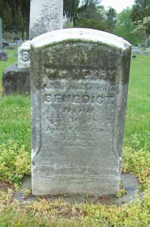 BENEDICT, WILLIAM HENRY - Trumbull County, Ohio | WILLIAM HENRY BENEDICT - Ohio Gravestone Photos