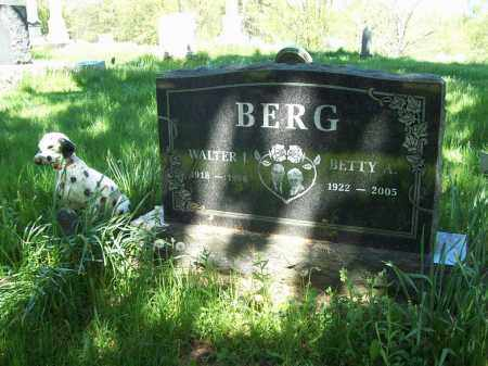 BERG, WALTER J. - Trumbull County, Ohio | WALTER J. BERG - Ohio Gravestone Photos