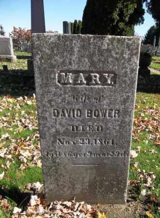 BOWER, MARY - Trumbull County, Ohio   MARY BOWER - Ohio Gravestone Photos