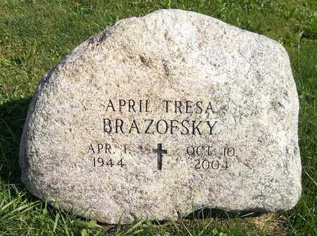 BRAZOFSKY, APRIL TRESA - Trumbull County, Ohio | APRIL TRESA BRAZOFSKY - Ohio Gravestone Photos