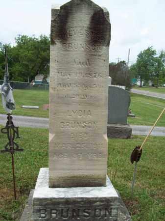 BRUNSON, SYLVESTER - Trumbull County, Ohio | SYLVESTER BRUNSON - Ohio Gravestone Photos