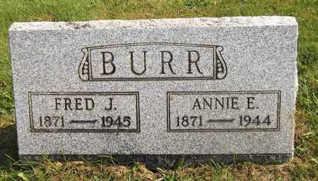 BURR, ANNIE E. - Trumbull County, Ohio | ANNIE E. BURR - Ohio Gravestone Photos