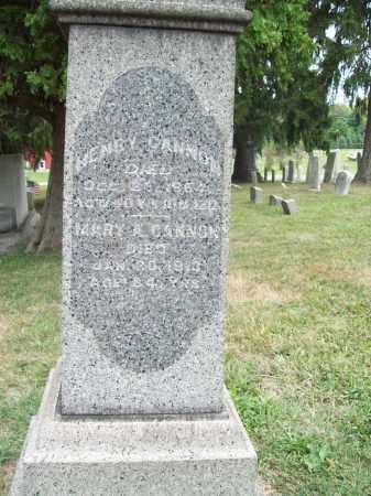 CANNON, HENRY - Trumbull County, Ohio | HENRY CANNON - Ohio Gravestone Photos