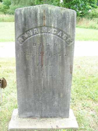 CASE, ANNA M. - Trumbull County, Ohio | ANNA M. CASE - Ohio Gravestone Photos