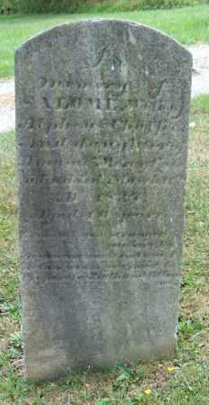 CHAFFEE, SALOME - Trumbull County, Ohio | SALOME CHAFFEE - Ohio Gravestone Photos