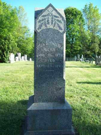CHALKER, LYDIA D. - Trumbull County, Ohio | LYDIA D. CHALKER - Ohio Gravestone Photos