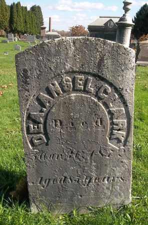 CLARK, ANSEL - Trumbull County, Ohio | ANSEL CLARK - Ohio Gravestone Photos