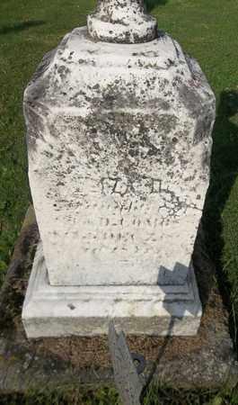 COMBS, ELIZA D. - Trumbull County, Ohio   ELIZA D. COMBS - Ohio Gravestone Photos