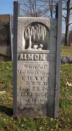 CRAFT, ALMON T. - Trumbull County, Ohio   ALMON T. CRAFT - Ohio Gravestone Photos