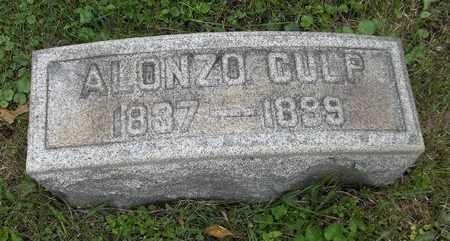 CULP, ALONZO - Trumbull County, Ohio | ALONZO CULP - Ohio Gravestone Photos